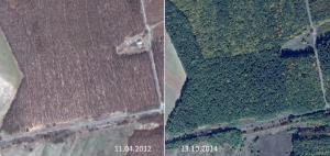 Весняний та осінній знімки з Google Earth