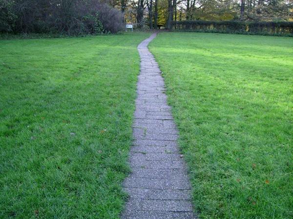 Вузька асфальтована доріжка на місцевості